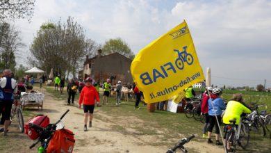 Photo of Sosteniamo il Ciclorifugio sulla ciclabile Adige Sud a Roverchiara