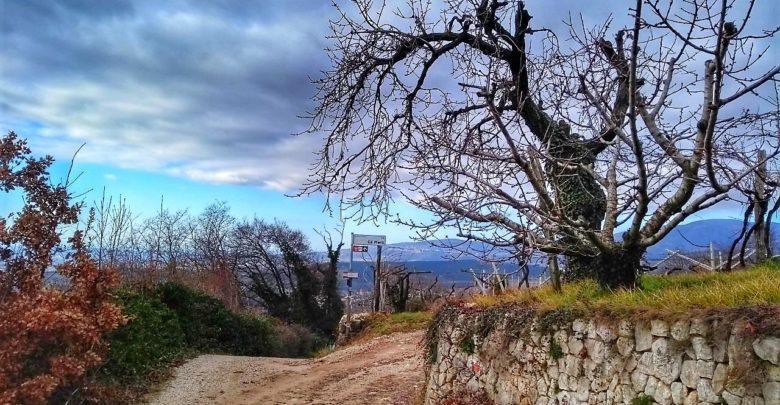 Photo of Percorsi in Valpolicella e Valdadige: Itinerario 50