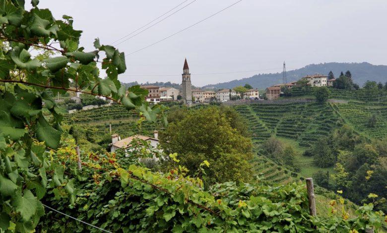 Photo of ANNULLATO - Prosecco tour [Bassainbici]